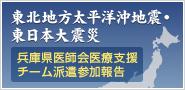 東北地方太平洋沖地震・東日本大震災